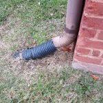 raccordement de gouttière au drain dans le sol